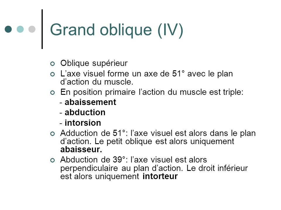 Grand oblique (IV) Oblique supérieur