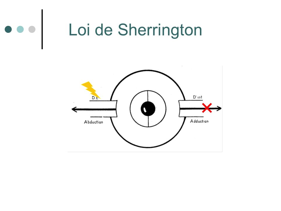 Loi de Sherrington