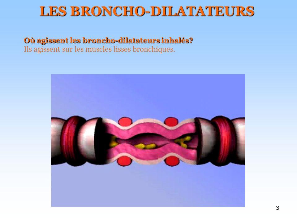 LES BRONCHO-DILATATEURS