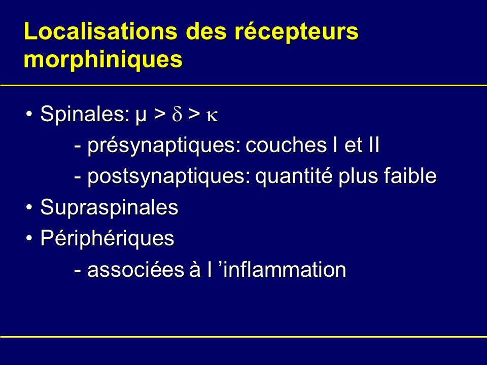 Localisations des récepteurs morphiniques