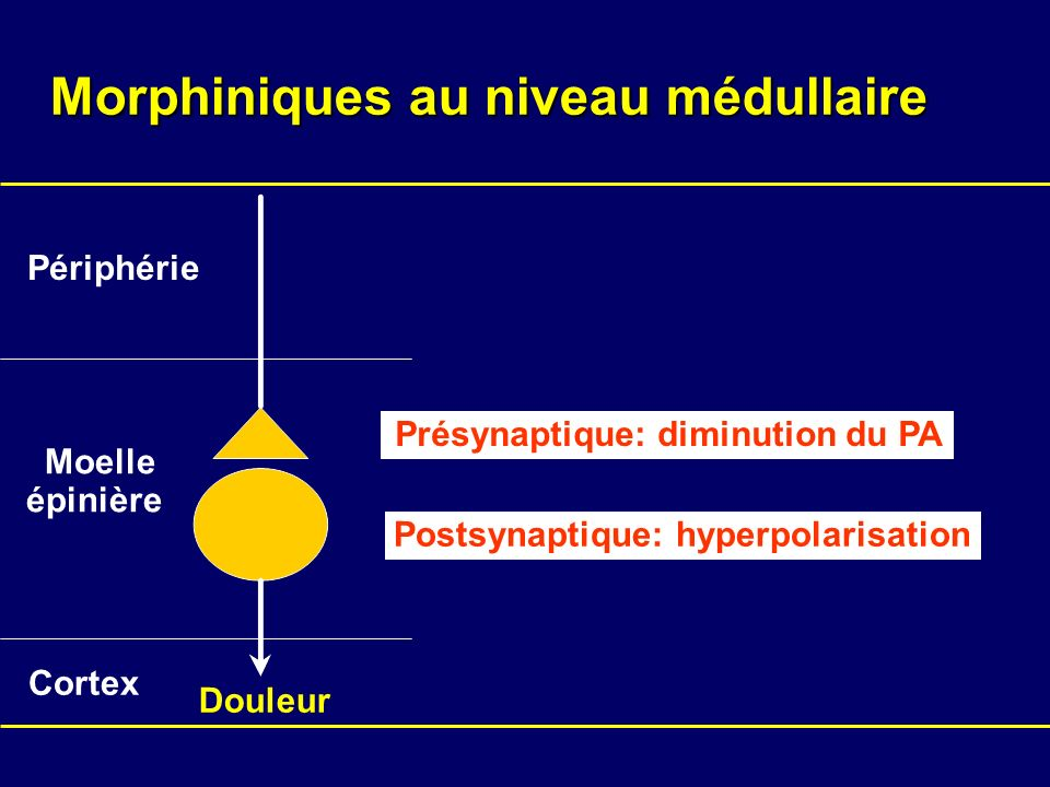 Morphiniques au niveau médullaire