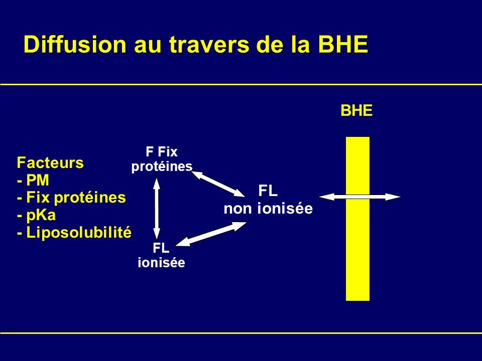 Diffusion au travers de la BHE