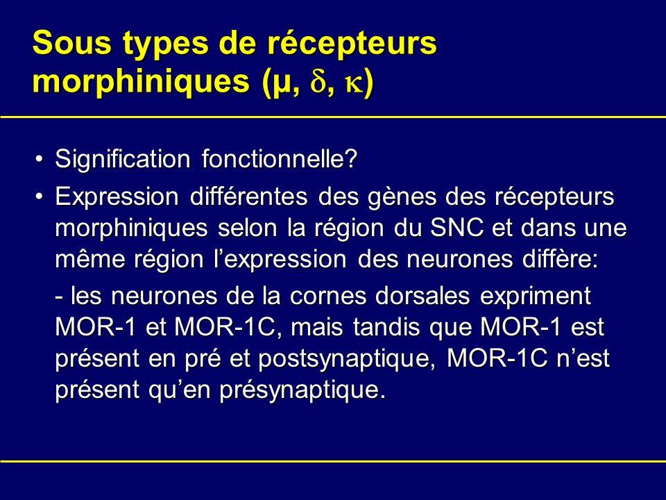 Sous types de récepteurs morphiniques (µ, d, k)
