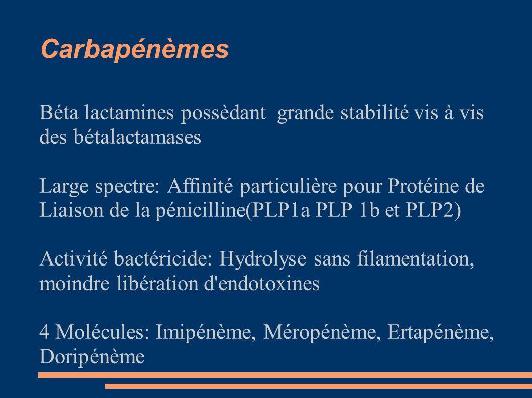 Carbapénèmes Béta lactamines possèdant grande stabilité vis à vis des bétalactamases.