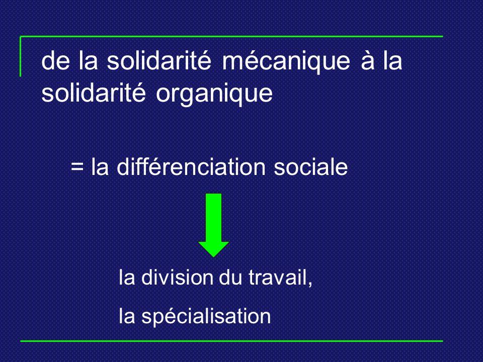 de la solidarité mécanique à la solidarité organique