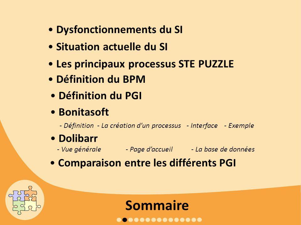 Sommaire • Dysfonctionnements du SI • Situation actuelle du SI