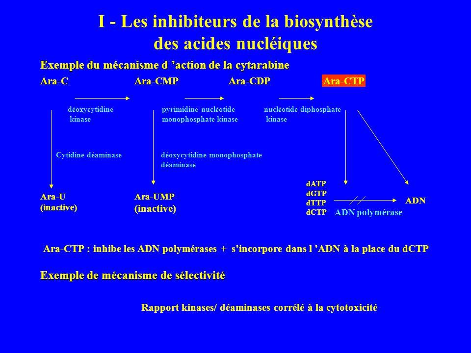 I - Les inhibiteurs de la biosynthèse des acides nucléiques