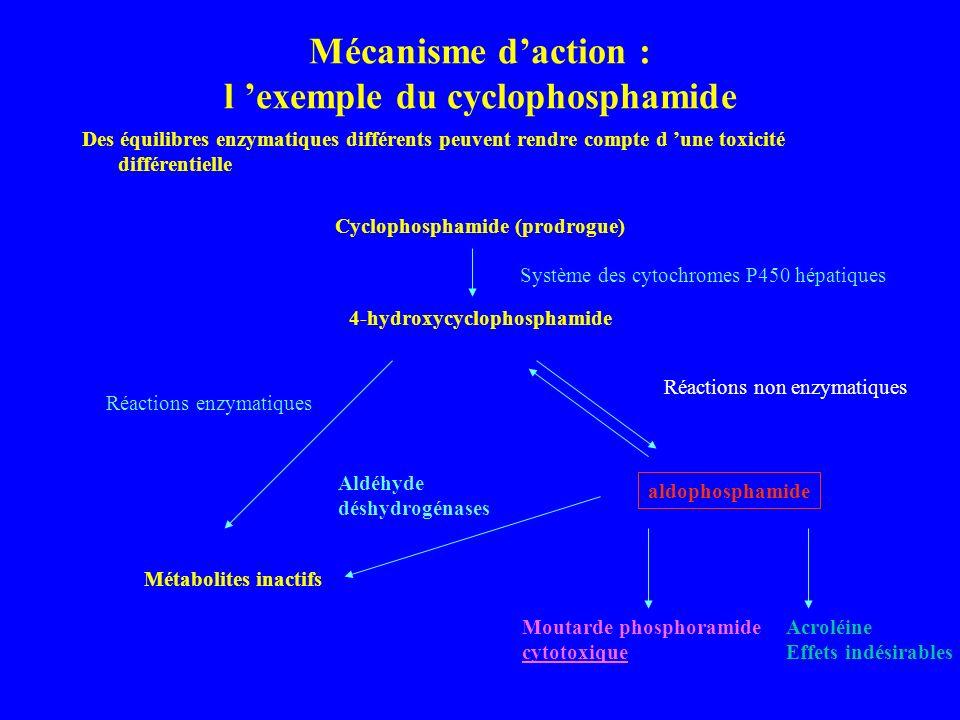 Mécanisme d'action : l 'exemple du cyclophosphamide