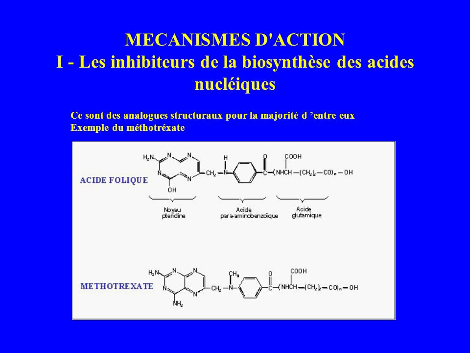 MECANISMES D ACTION I - Les inhibiteurs de la biosynthèse des acides nucléiques