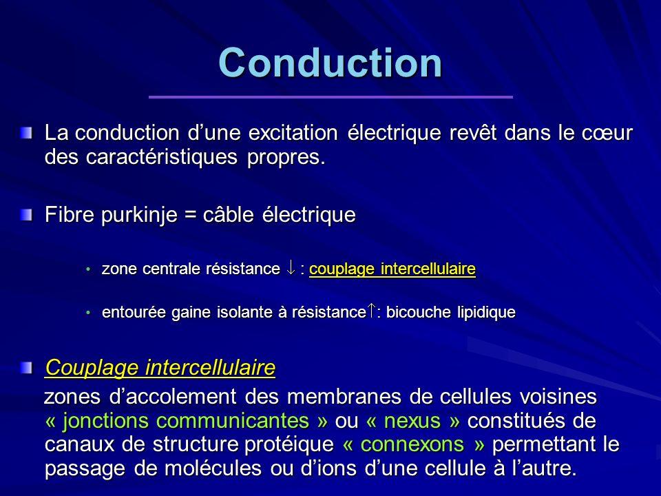 Conduction La conduction d'une excitation électrique revêt dans le cœur des caractéristiques propres.