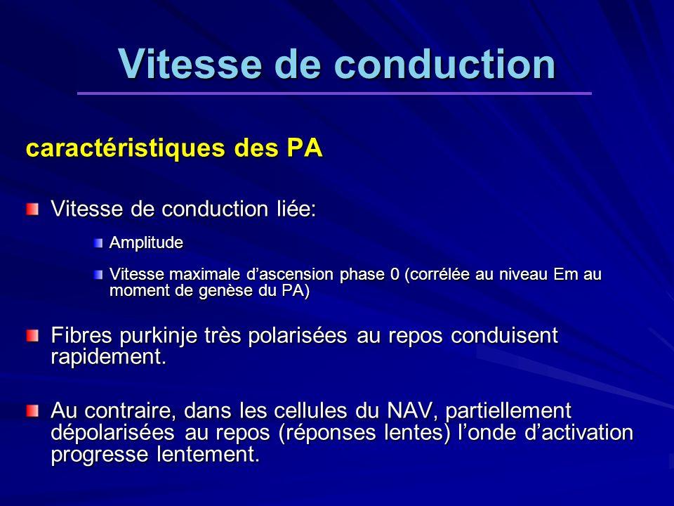 Vitesse de conduction caractéristiques des PA