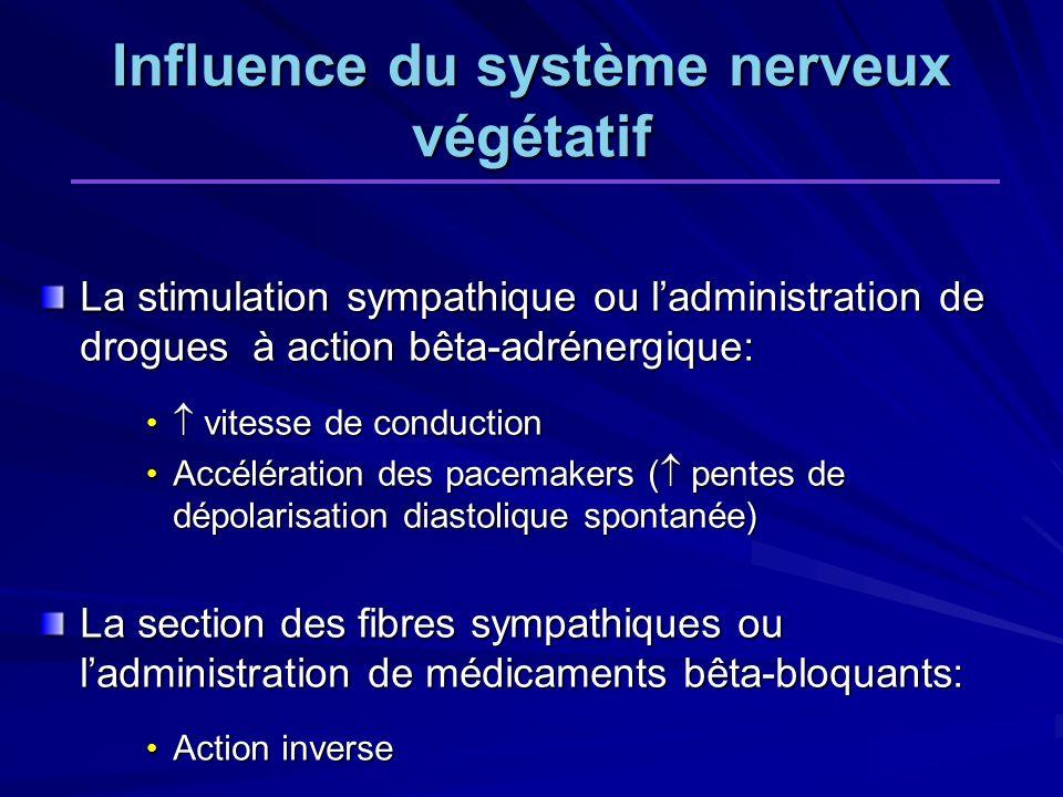 Influence du système nerveux végétatif