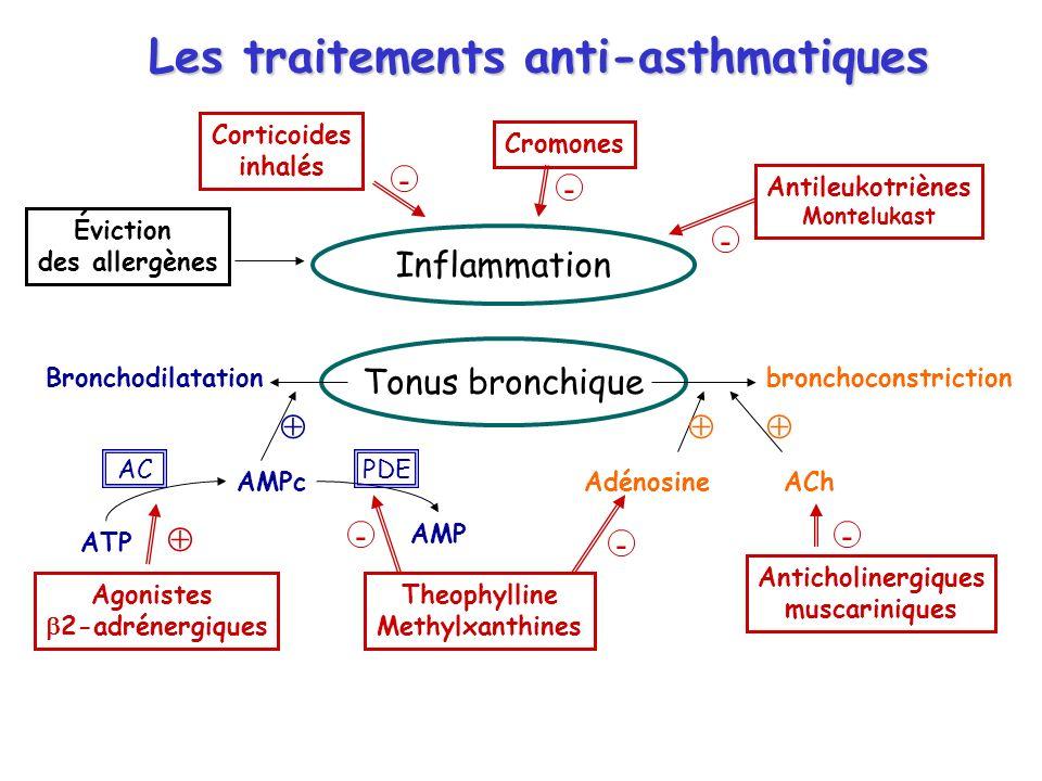 Les traitements anti-asthmatiques