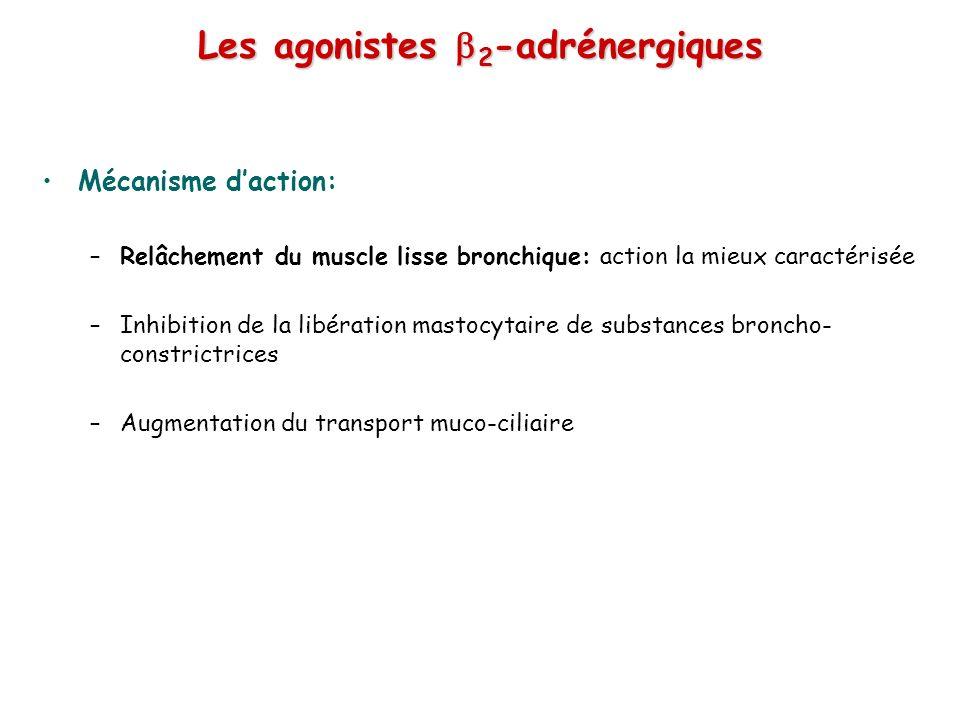 Les agonistes b2-adrénergiques