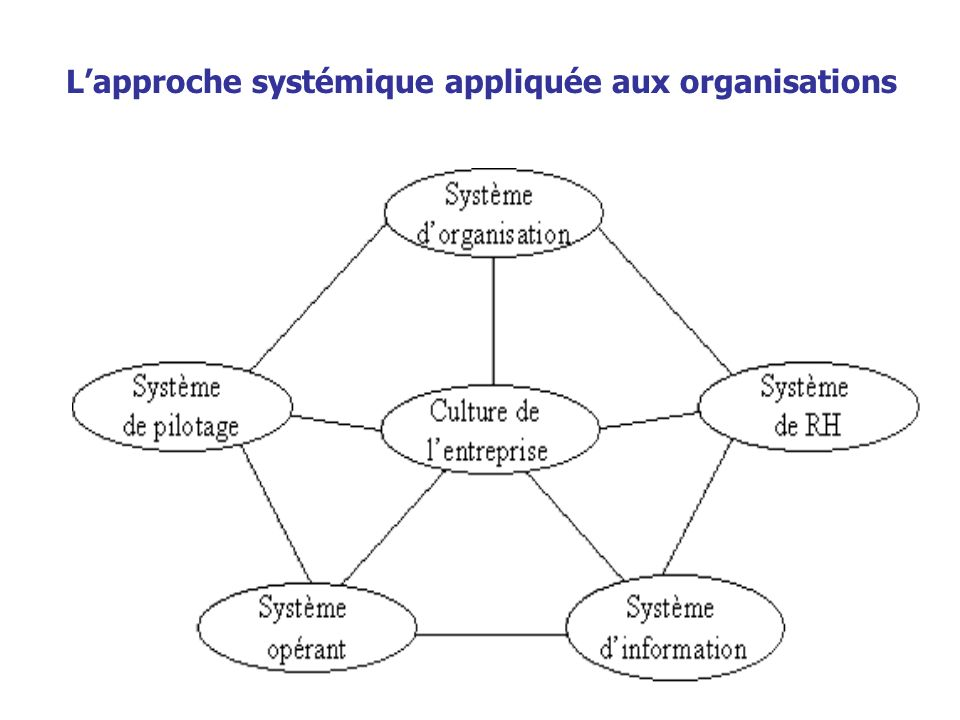 L'approche systémique appliquée aux organisations