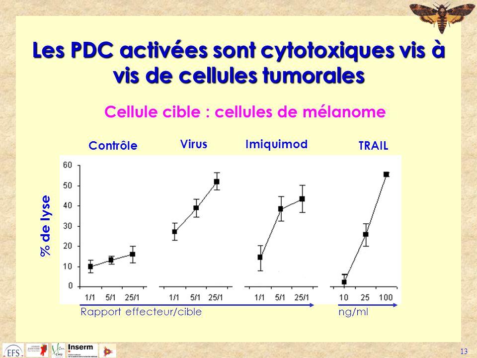 Les PDC activées sont cytotoxiques vis à vis de cellules tumorales
