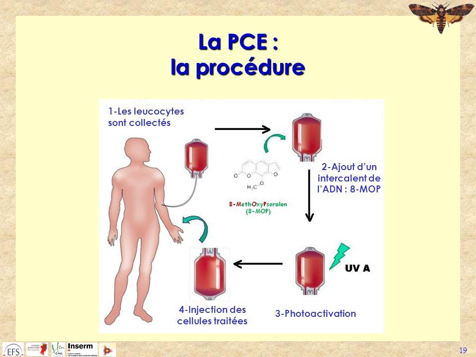 La PCE : la procédure 1-Les leucocytes sont collectés
