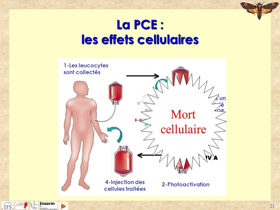 La PCE : les effets cellulaires