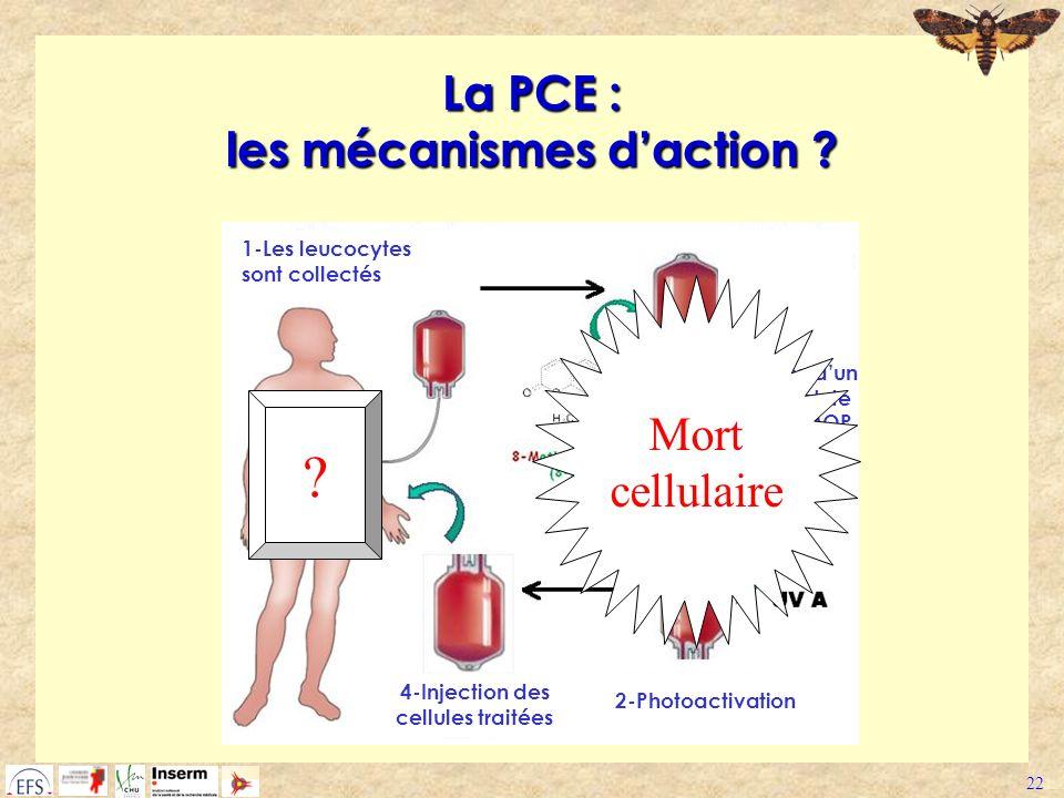 La PCE : les mécanismes d'action