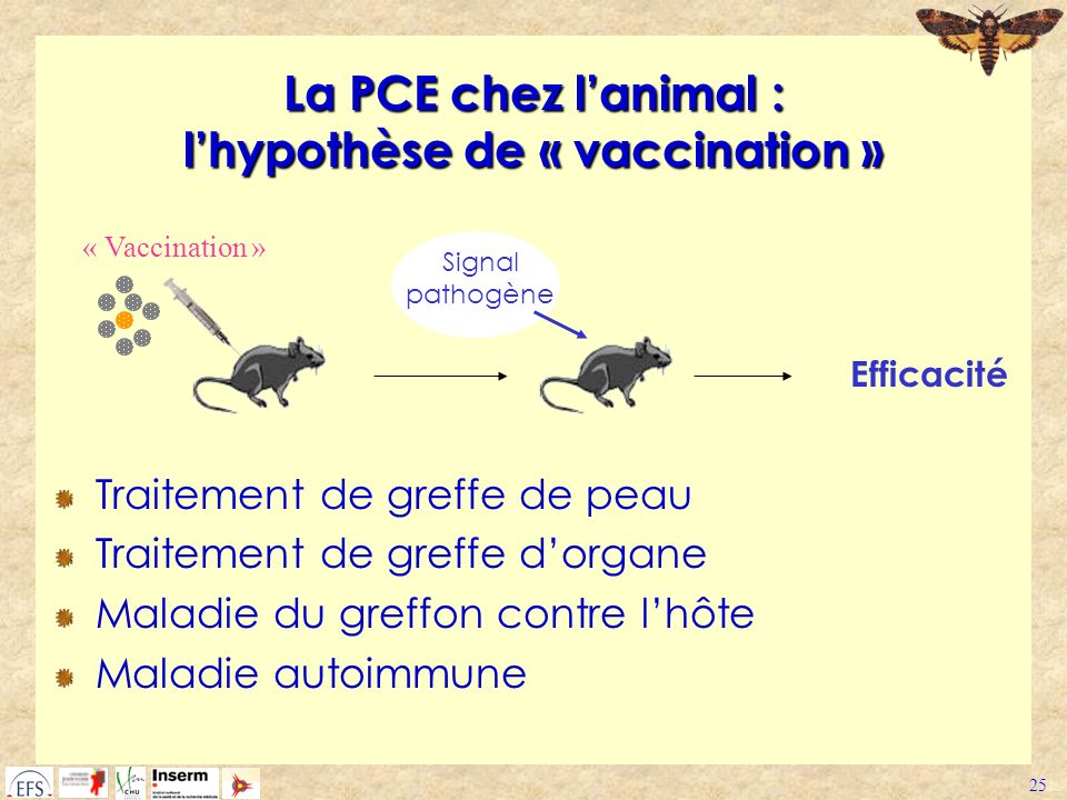 La PCE chez l'animal : l'hypothèse de « vaccination »