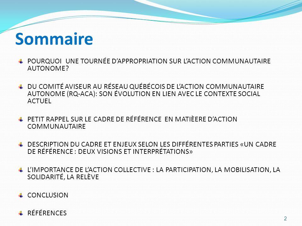 Sommaire POURQUOI UNE TOURNÉE D'APPROPRIATION SUR L'ACTION COMMUNAUTAIRE AUTONOME