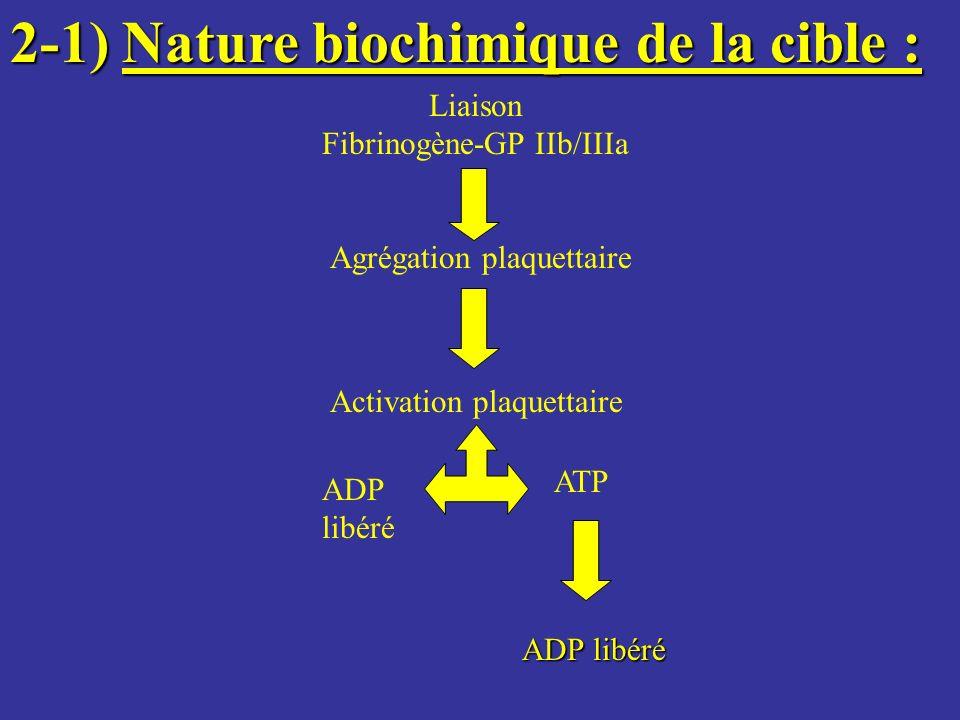 Fibrinogène-GP IIb/IIIa