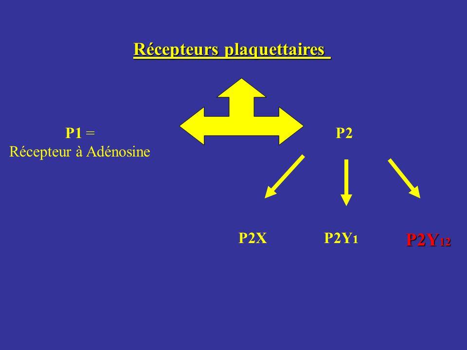 Récepteurs plaquettaires