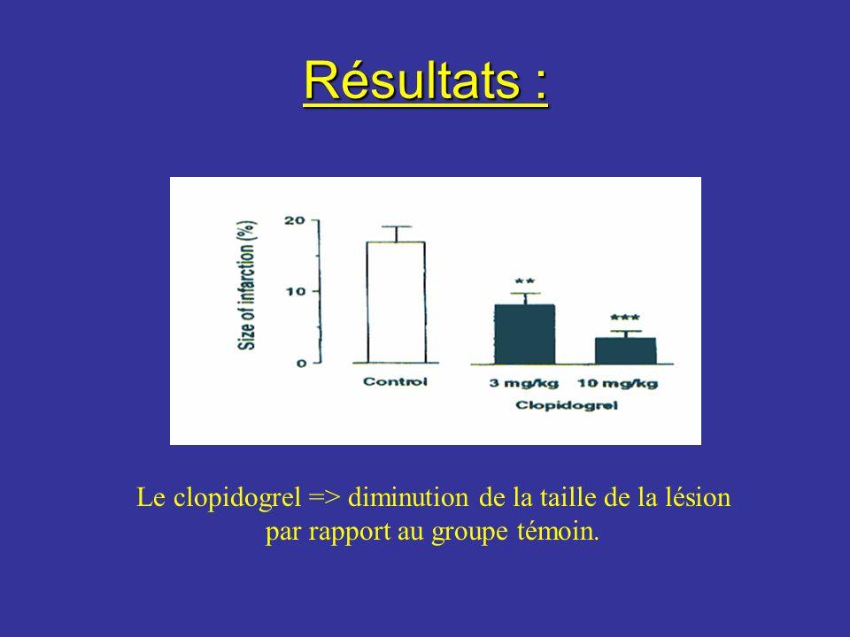 Résultats : Le clopidogrel => diminution de la taille de la lésion