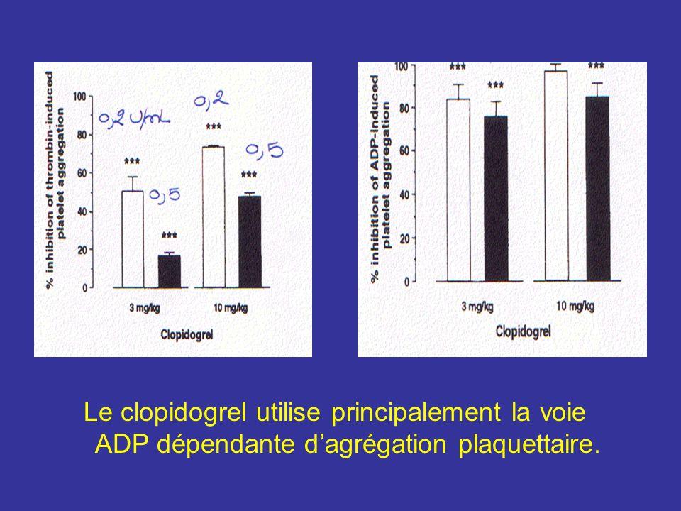 Le clopidogrel utilise principalement la voie ADP dépendante d'agrégation plaquettaire.