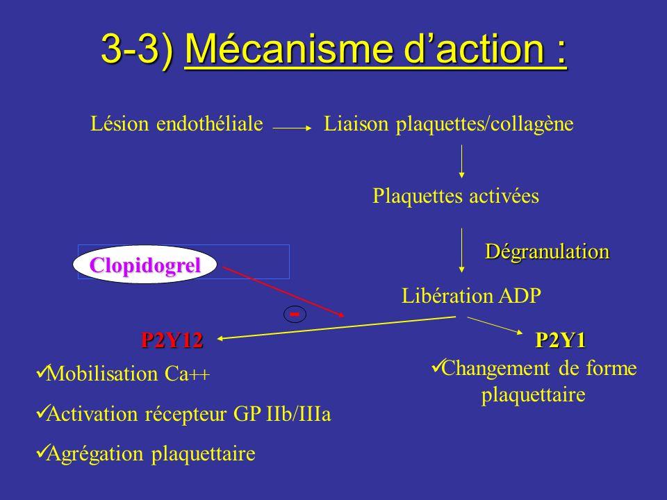 3-3) Mécanisme d'action :