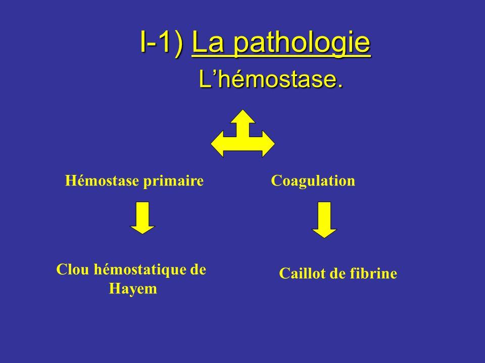 I-1) La pathologie L'hémostase.