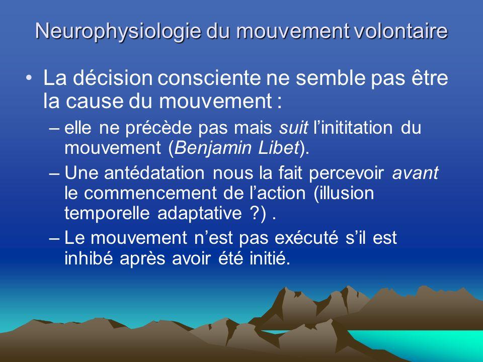 Neurophysiologie du mouvement volontaire