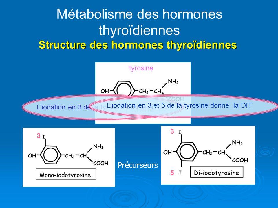 Métabolisme des hormones thyroïdiennes Structure des hormones thyroïdiennes