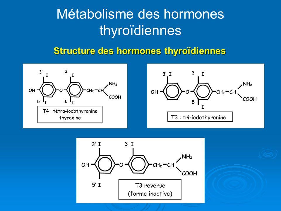 Métabolisme des hormones thyroïdiennes
