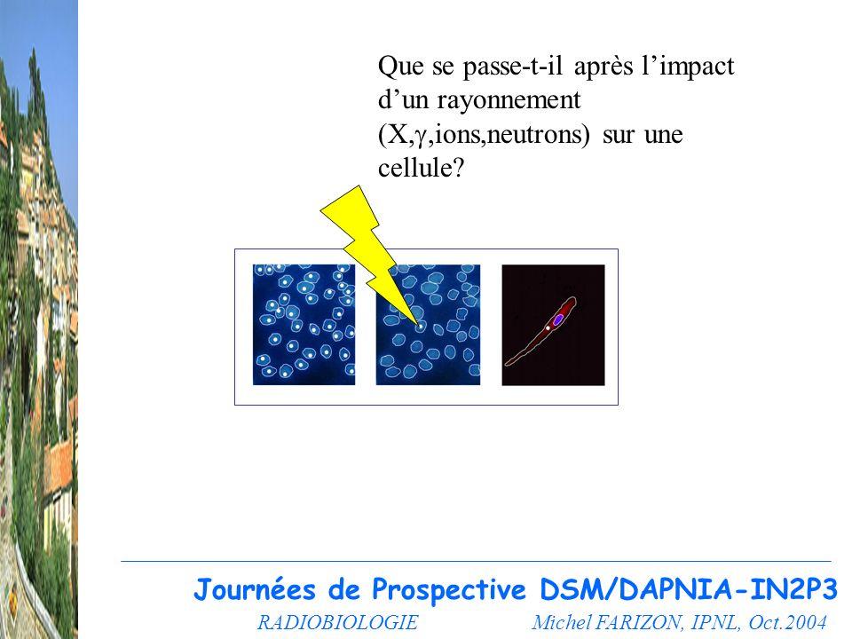 Journées de Prospective DSM/DAPNIA-IN2P3
