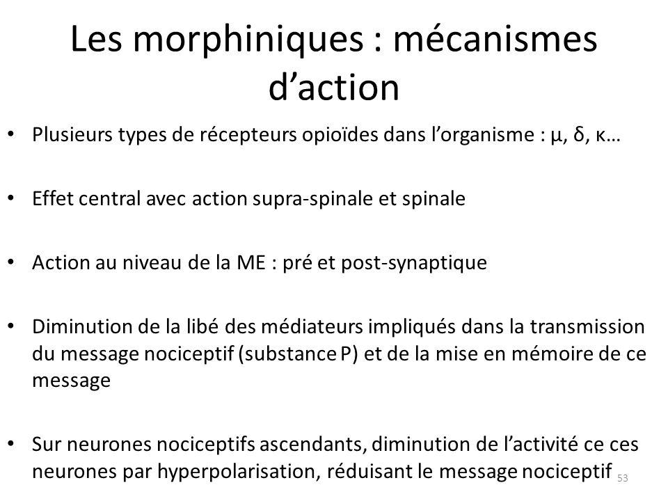 Les morphiniques : mécanismes d'action