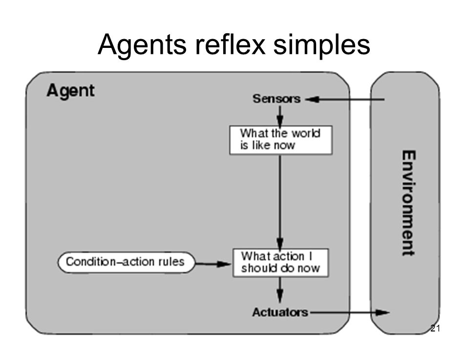 Agents reflex simples