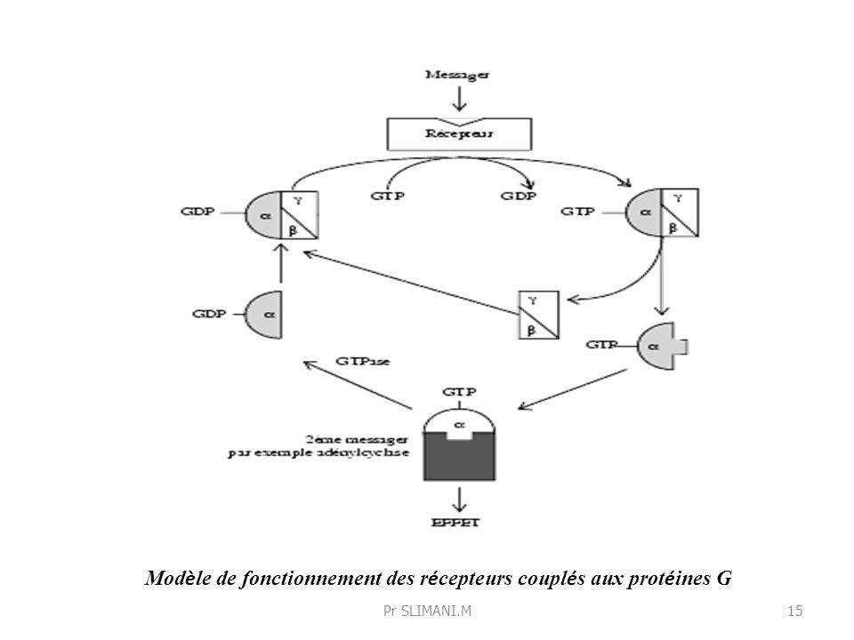 Modèle de fonctionnement des récepteurs couplés aux protéines G