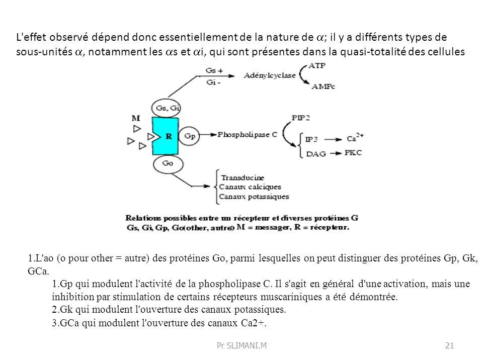 L effet observé dépend donc essentiellement de la nature de a; il y a différents types de sous-unités a, notamment les as et ai, qui sont présentes dans la quasi-totalité des cellules