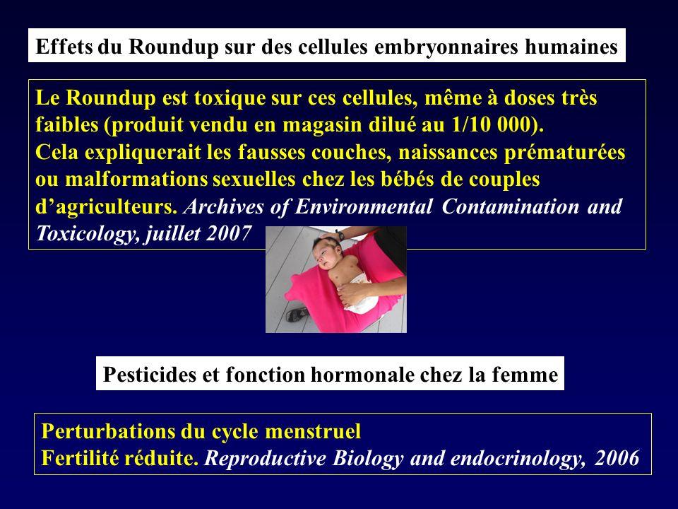 Effets du Roundup sur des cellules embryonnaires humaines