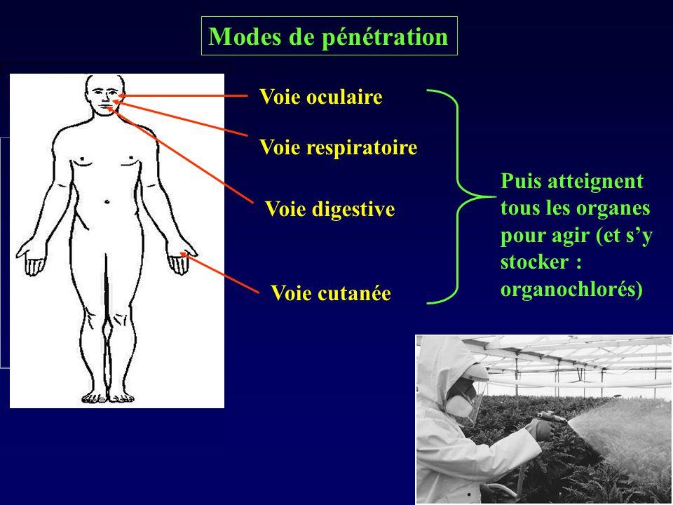 Modes de pénétration Voie oculaire Voie respiratoire