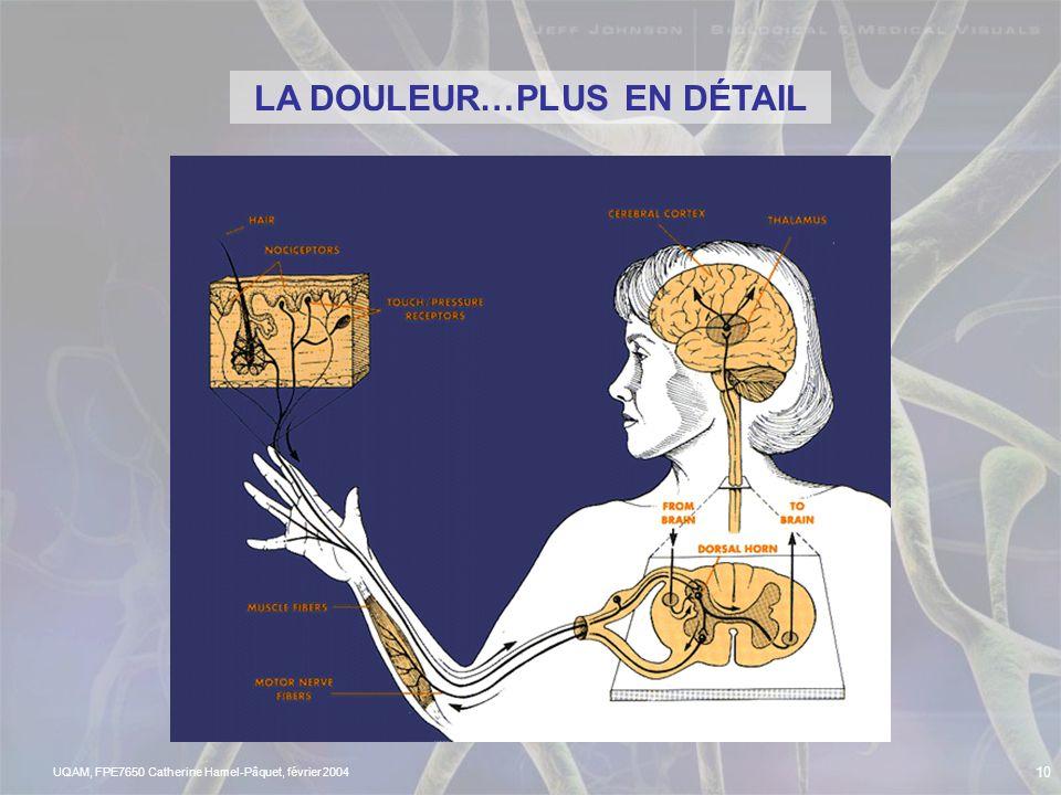 LA DOULEUR…PLUS EN DÉTAIL