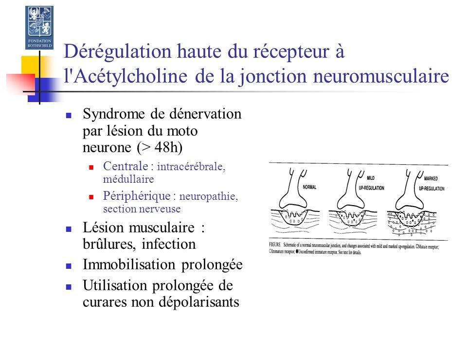 Dérégulation haute du récepteur à l Acétylcholine de la jonction neuromusculaire