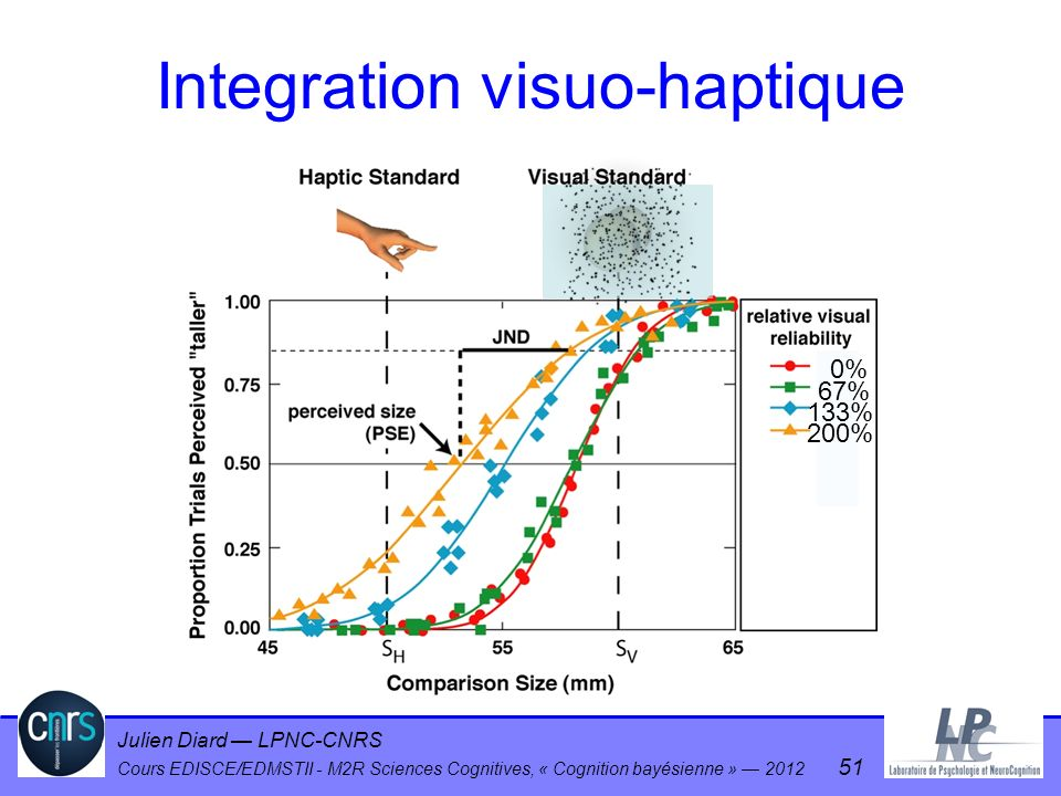 Integration visuo-haptique