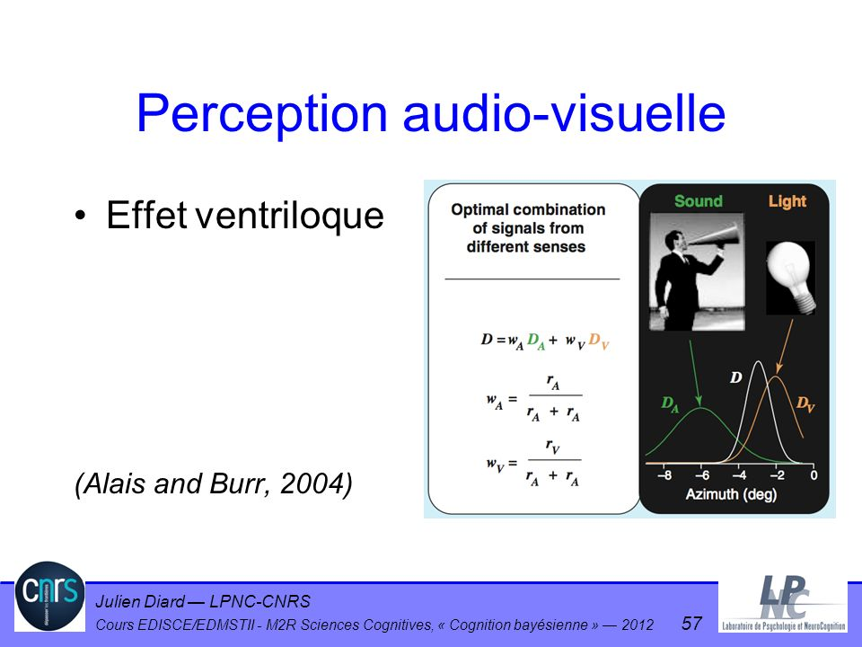 Perception audio-visuelle