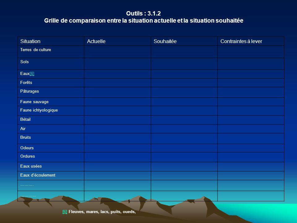 Outils : 3.1.2 Grille de comparaison entre la situation actuelle et la situation souhaitée. Situation.