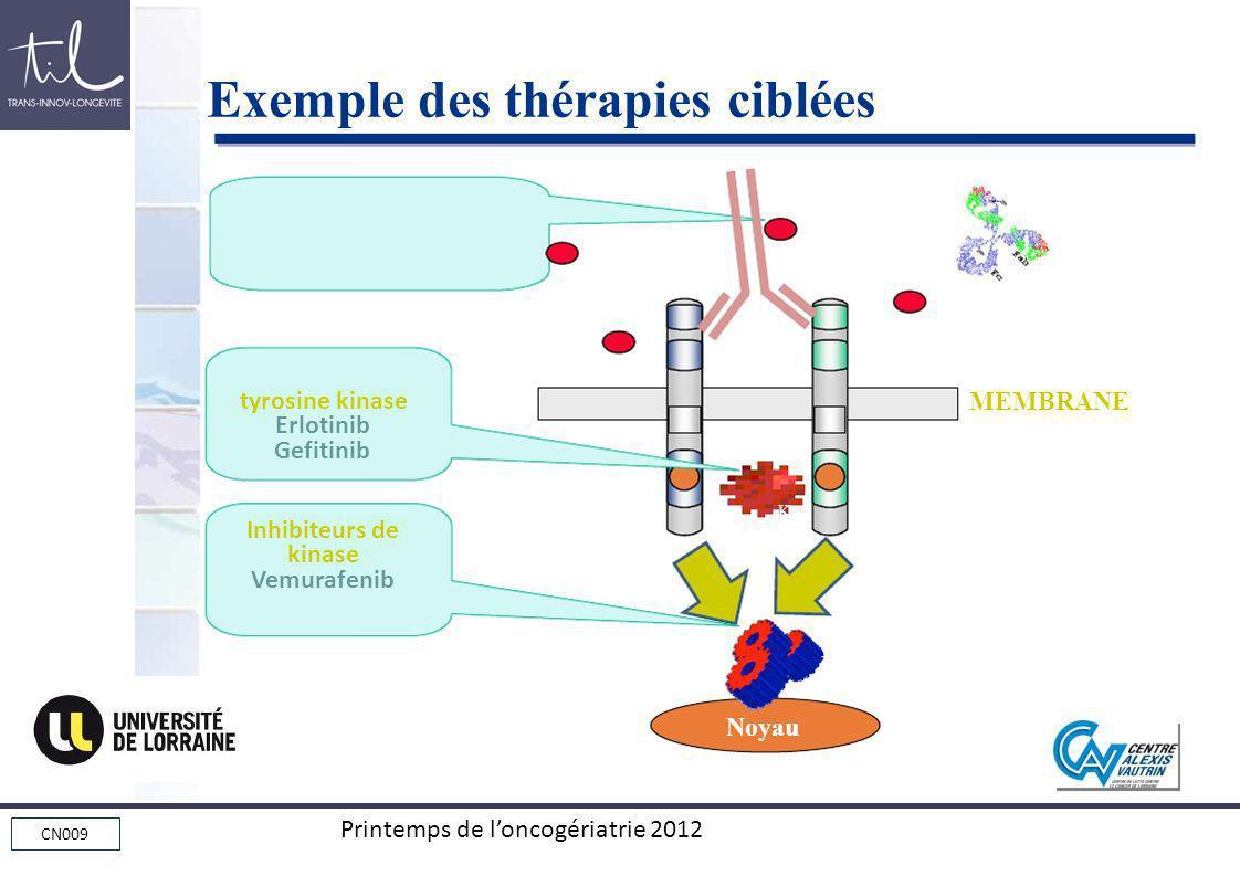 Exemple des thérapies ciblées