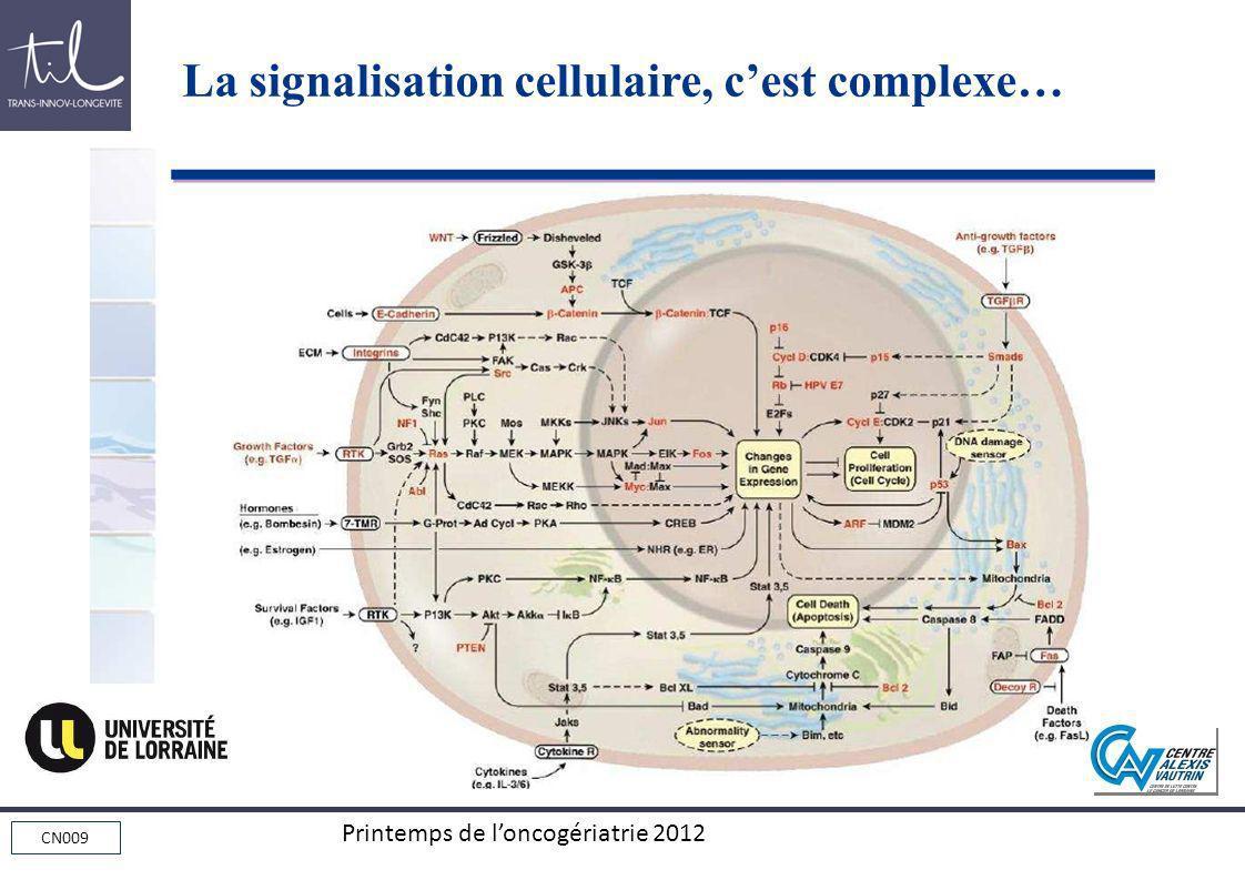 La signalisation cellulaire, c'est complexe…