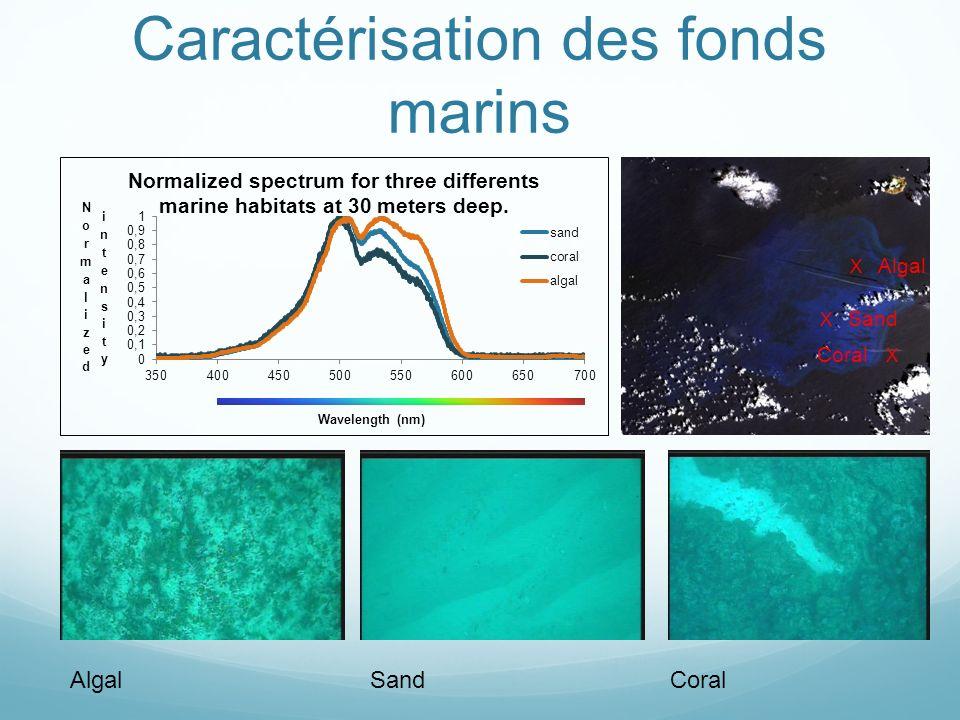 Caractérisation des fonds marins