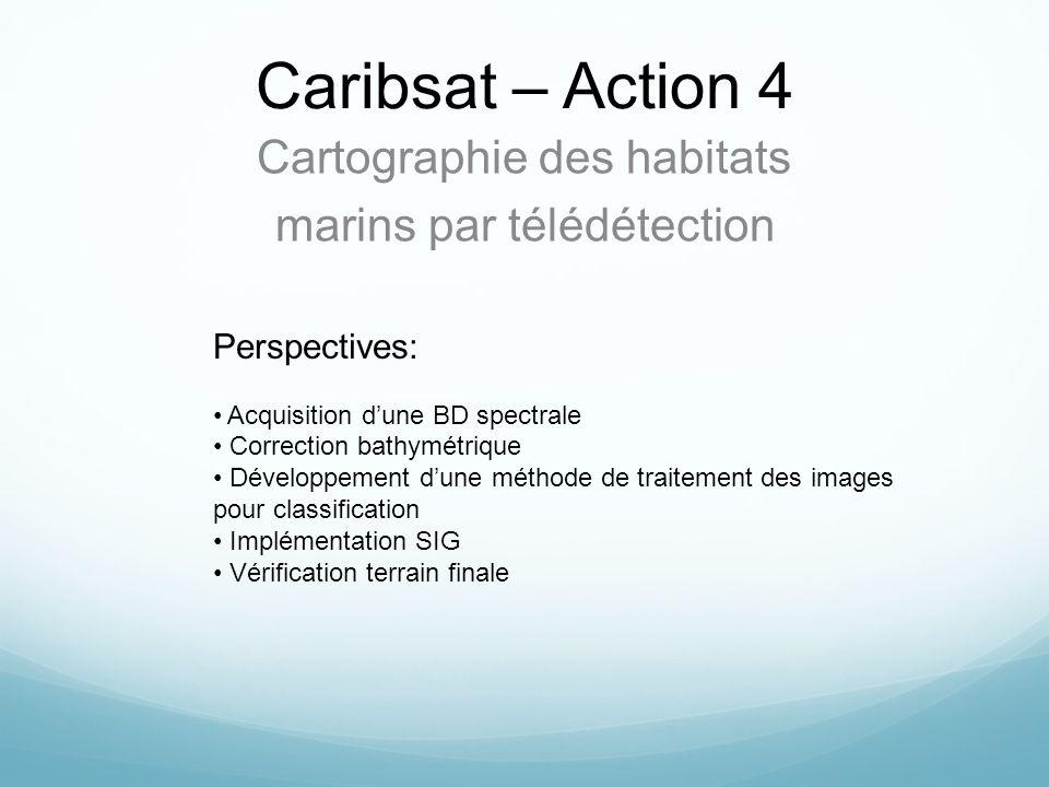 Caribsat – Action 4 Cartographie des habitats marins par télédétection